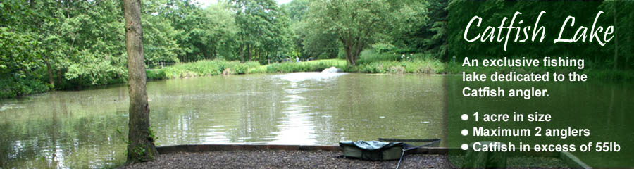 churchwood fisheries catfish lake